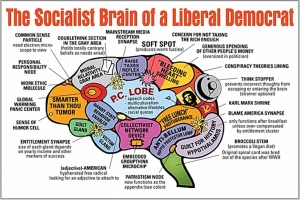 libtard-social-justice-warrior-democrat-brain