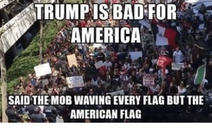 trumpis-bad-for-america-said-the-mob-waving-every-flag-2629854